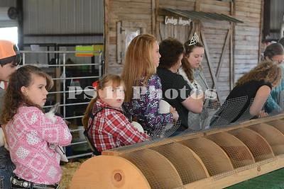 Fryer Show at Trinity Community Fair 2015