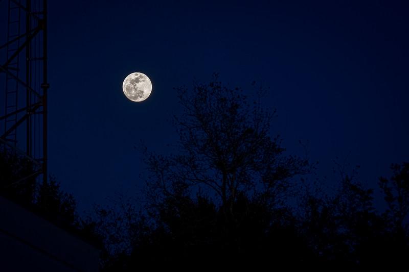 Full Super Blue Moon