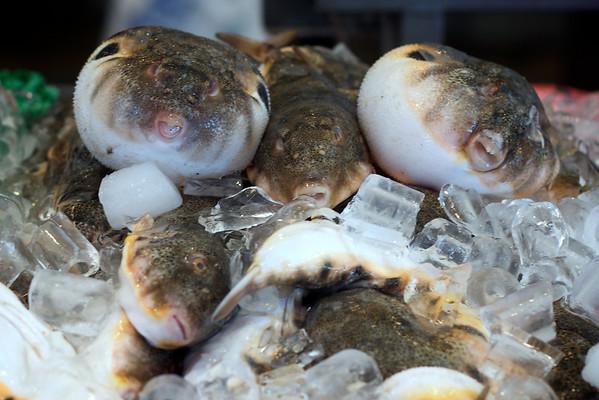 DC Waterfront Fish Market