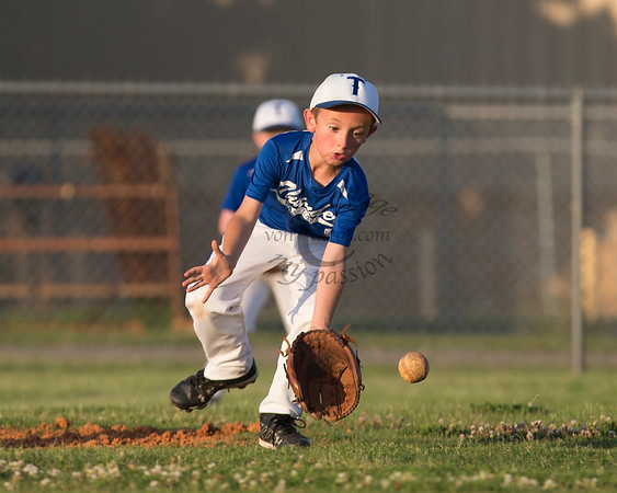 Muskogee Little League Baseball