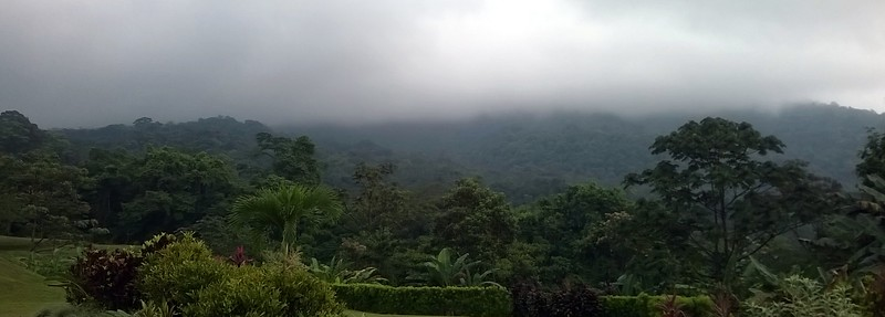 The next morning the mist and clouds had moved in to cover Arenal Volcano.