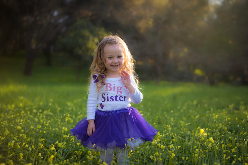 Zoey's Big Sister Portrait Session