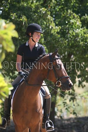 ALB-Stilwell Kingsley V-saddle