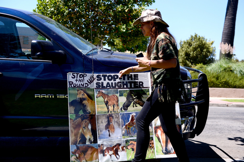 . Katalina Robledo, of Quartz Hill, moves a poster as Wildlife activists gather outside the Ninth Circuit Court of Appeals in Pasadena before attending a hearing on Bureau of Land Management\'s round-up of wild horses Thursday, August 29, 2013.  (Photo by Sarah Reingewirtz/Pasadena Star-News)
