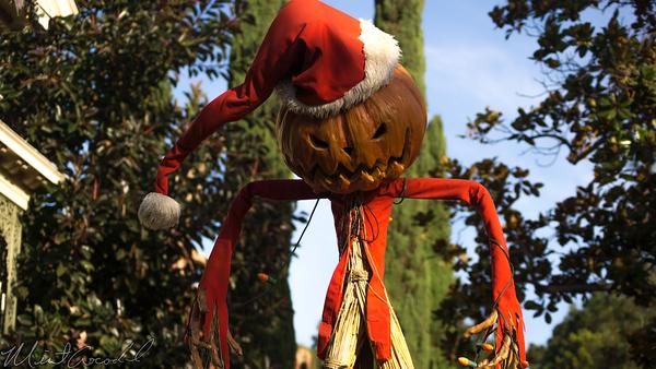 Disneyland Resort, Disneyland, Halloween, New Orleans Square, Haunted Mansion, Haunted Mansion Holiday