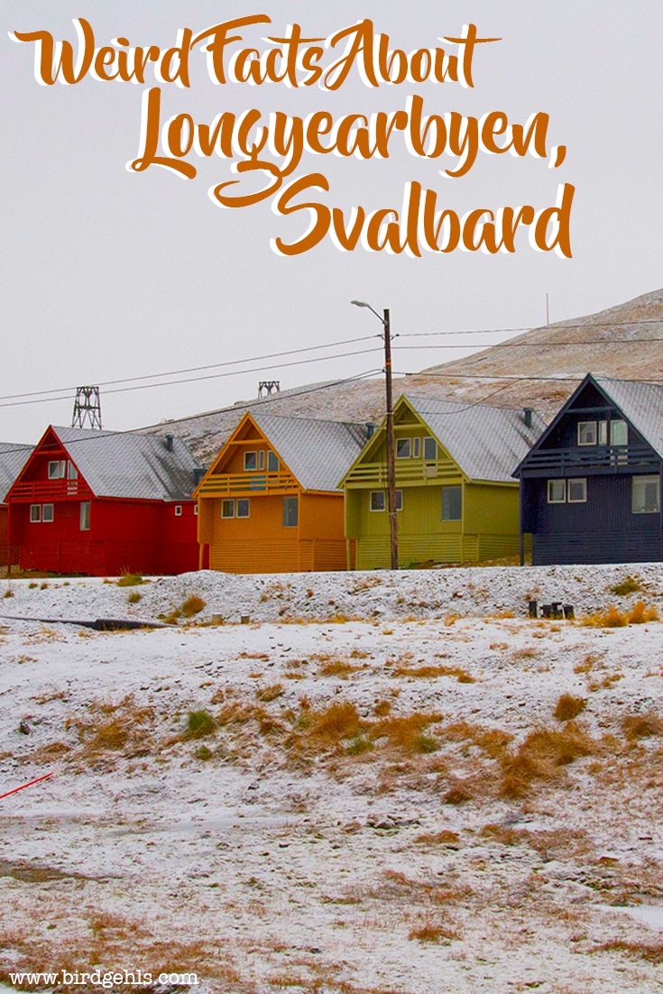 Longyearbyen might just be one of the strangest and simultaneously most delightful towns in the world. Here are 14 facts about Svalbard's capital.