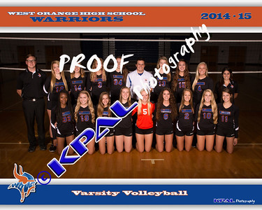 Girls Volleyball Team Pictures 2014
