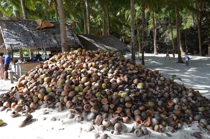 DSC_6744-7-commandos-beach-coconuts.JPG