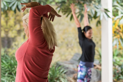 Dynamic Stretching Class at the South Coast Botanic Garden
