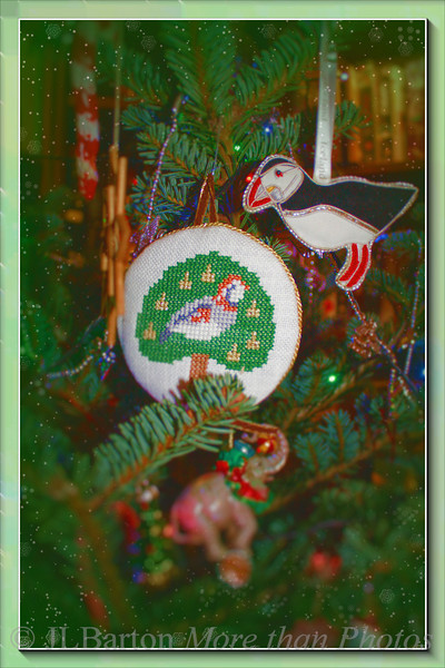 Puffin and Partridge on a Fir Tree