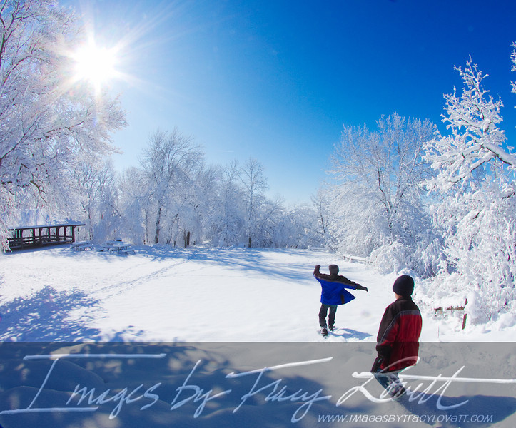 snow_3360 copy.jpg