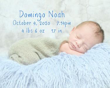 Domingo Noah 2020