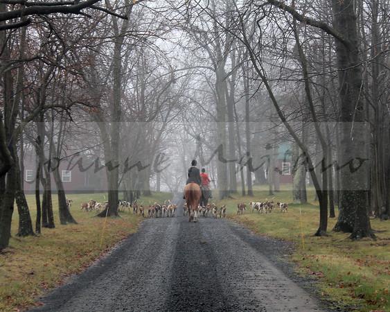 Piedmont Fox Hounds at Pelham 12-23-14