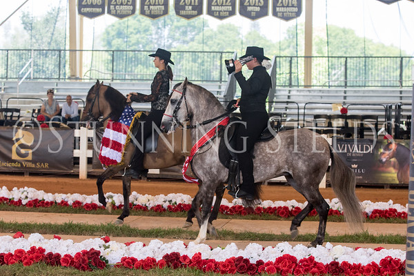 295-Youth Horsemanship Championship