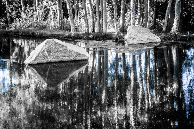 August 29 - Reflections in a pond in Mammoth Lakes, CA.jpg