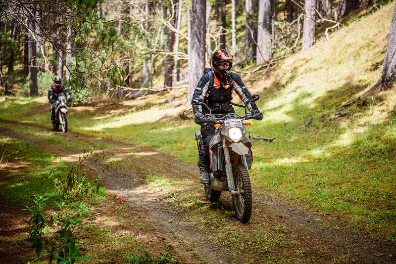 2018 KTM New Zealand Adventure Rallye - Northland (277).jpg