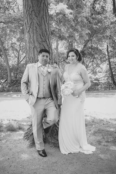 Henry & Marla - Central Park Wedding-30.jpg