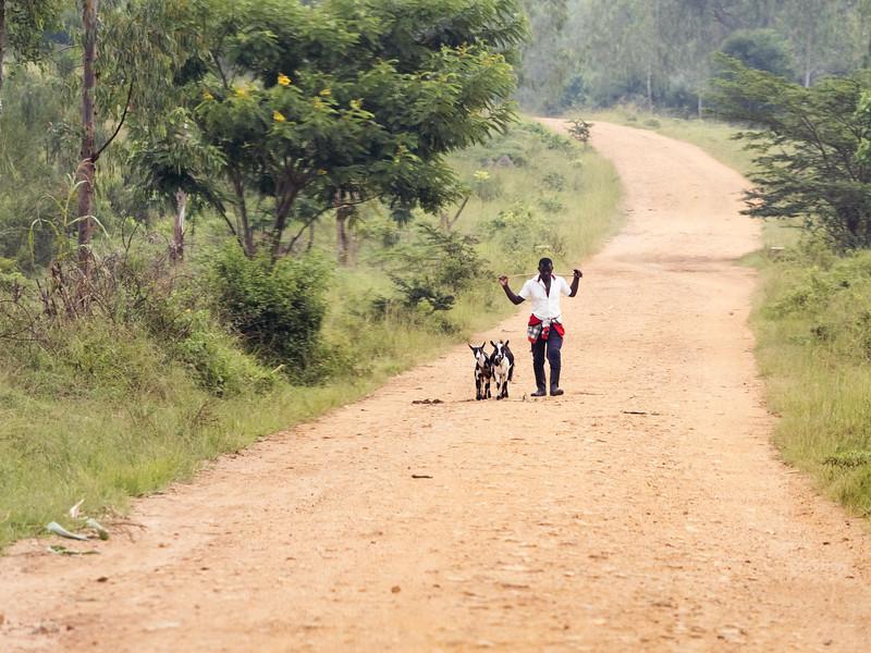 RichardTerborg_RwandaPP6.jpg