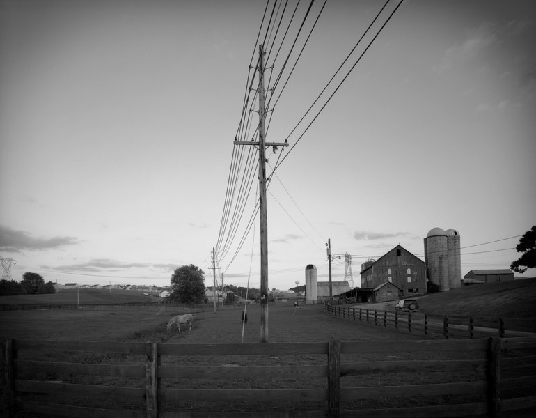 Pasture [Powerlines]