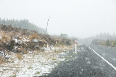 Wanganui Work Trip