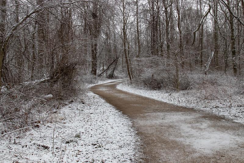snowy path 2 011821.jpg