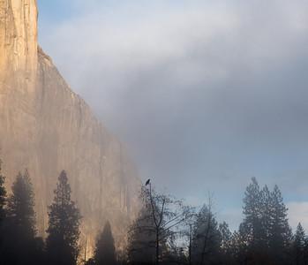 YosemiteFall2013