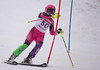 Virginia Gaylord hits a gate in the U16 Slalom race at Bosquet Ski Area on February 2, 2014.