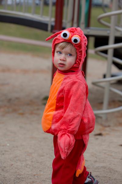 Wyatt's First Halloween 110.jpg