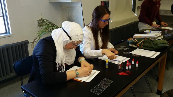Biology Investigations