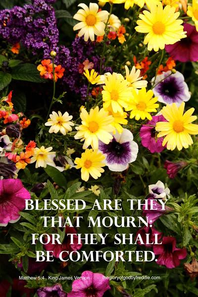 Matthew 5-4  .jpg