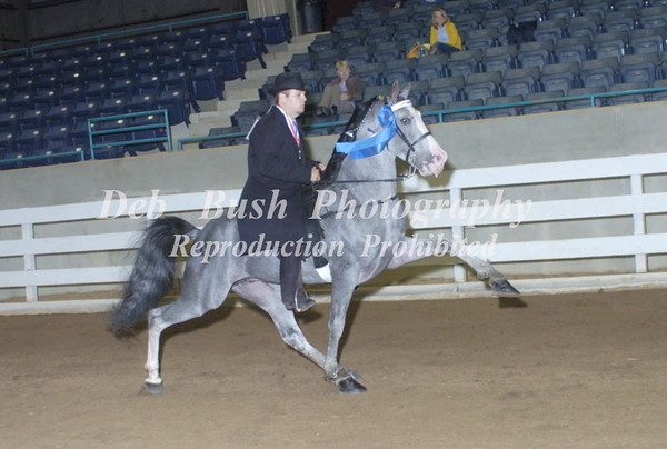 CLASS 24 PARK PERFORMANCE OPEN SPECIALTY