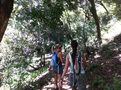 Newton Canyon Hike