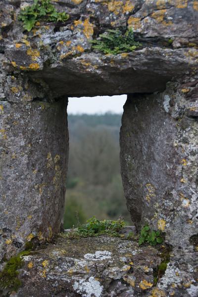 blarney-castle-61.jpg