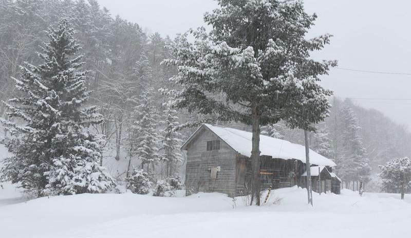 Let it snow, let it snow, let it snow....