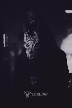 Thy Antichrist-Plutonian Shore-Widower