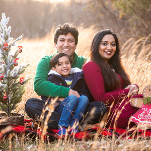 Sitara & Amith's Family Portraits