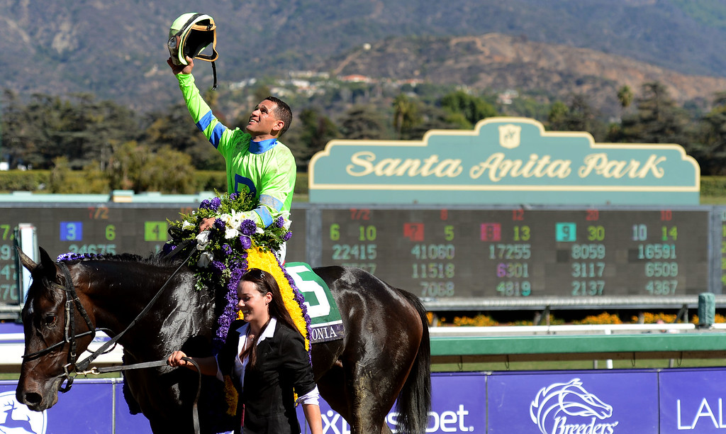 ". Jockey Javier Castellano atop ""Ria Antonia\"" holds his helmet to the sky after winning the fourth race during the Breeders\' Cup at Santa Anita Park in Arcadia, Calif., on Saturday, Nov. 2, 2013.    (Keith Birmingham Pasadena Star-News)"