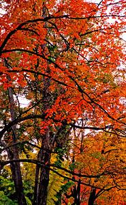 Northwest Pennsylvania