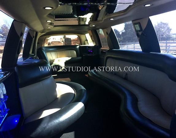 LoneStar Limousine