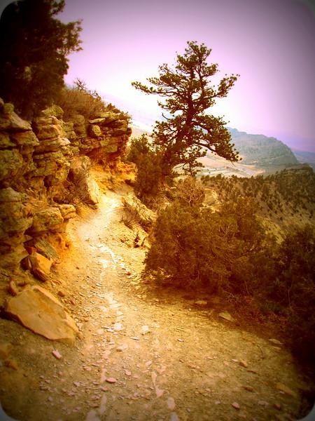 Local Hikes (943).JPG