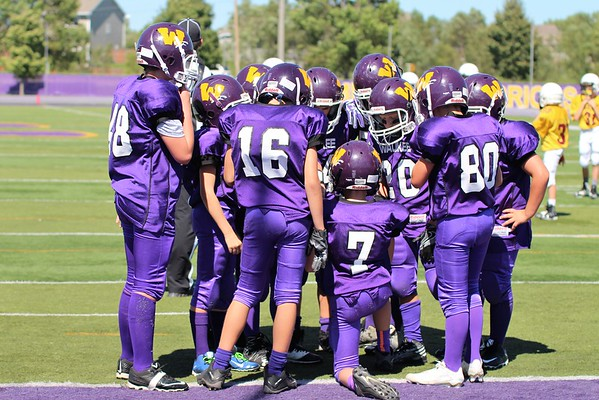 Waukee Purple (6th Grade) 2016