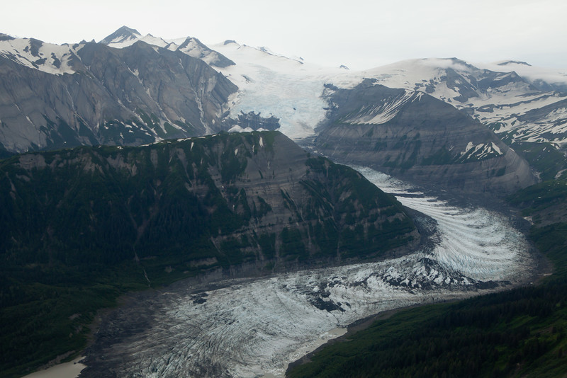 Alaska Icy Bay-4503.jpg