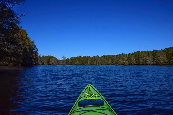 Sparkleberry Swamp  2017 Paddle