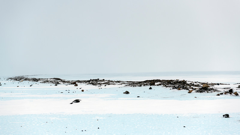 Union Glacier -1-8-18094488.jpg