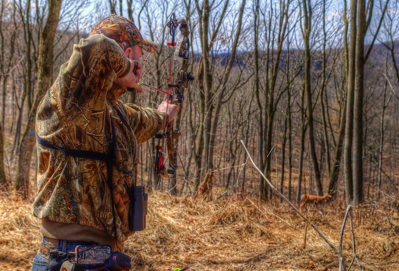 archery - camp mack 3d shoot deer 1(p).jpg