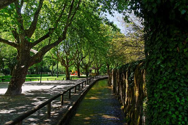 Jardim do Lenteiro do Rio - S. Pedro do Sul