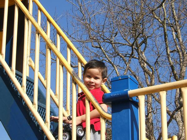 2006 01 28 Jack at the yellow park plus parrots