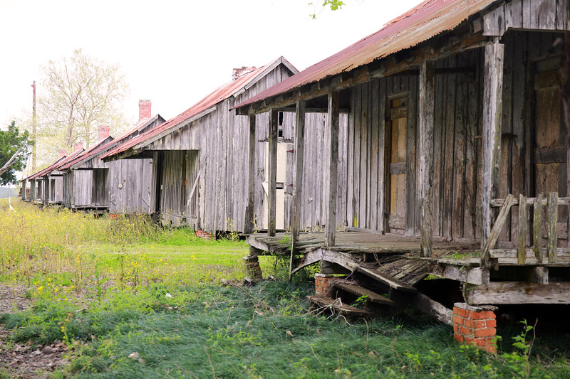 Old Sharecropper Cabins in Raceland, Louisiana