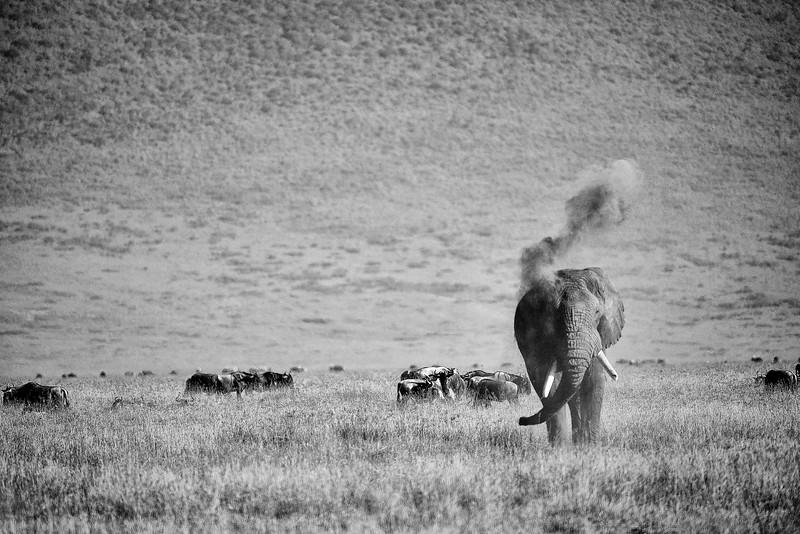 Tanzania 2013 301.jpg
