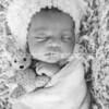 Zara's Newborn Gallery_318